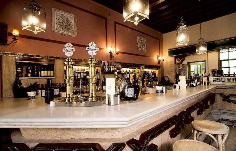 Casa Palacio Pilar del Toro - Bar - 12