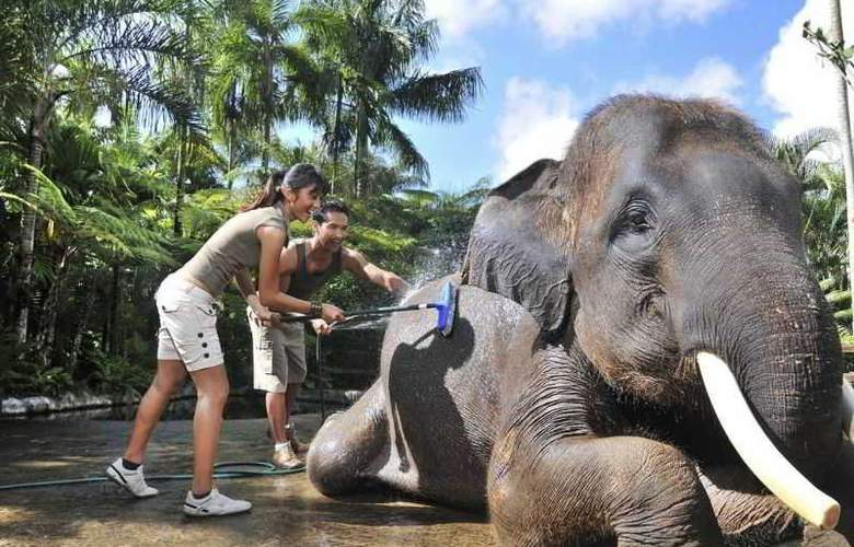 Elephant Safari Park Lodge - Sport - 13