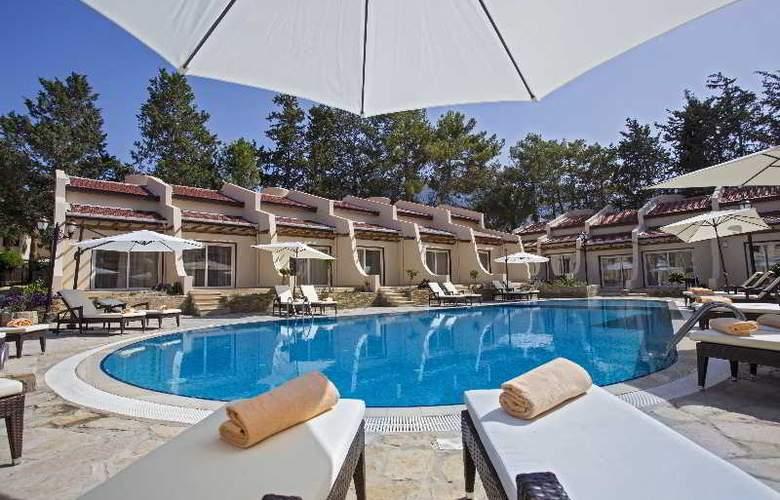 Chateau Lambousa Hotel - Pool - 19