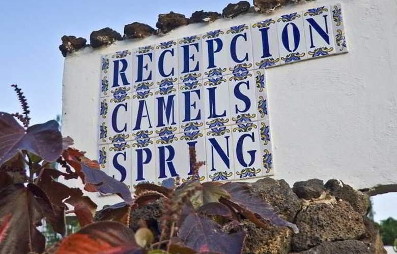 Camel Spring - Hotel - 15