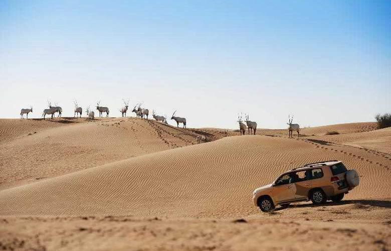 Al Maha Desert - Hotel - 27