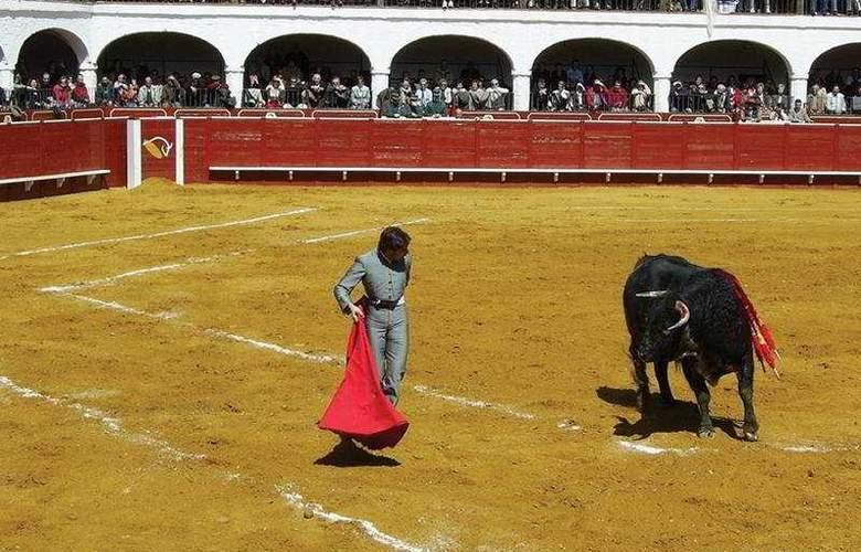 Plaza de Toros de Almaden - Sport - 7