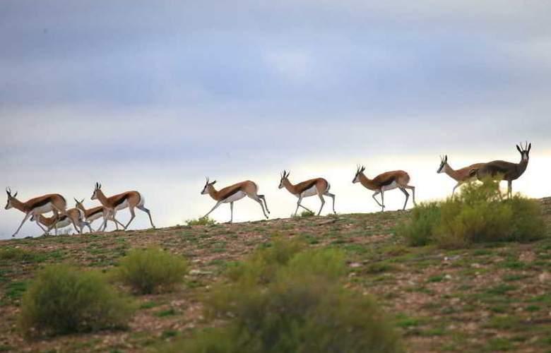 Madi Madi Karoo Safari Lodge - Sport - 21