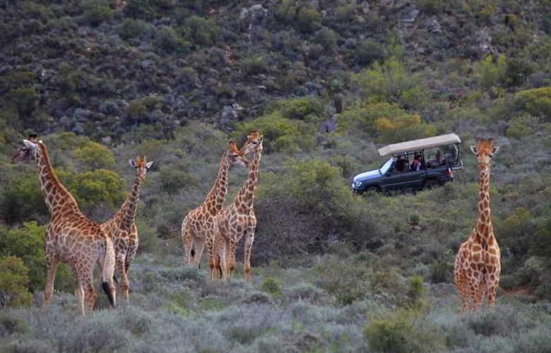 Madi Madi Karoo Safari Lodge - Sport - 23