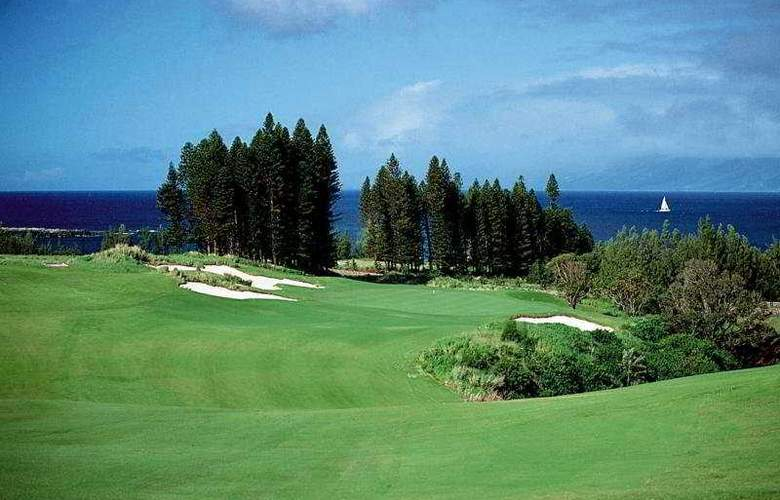 The Kapalua Villas - Sport - 11