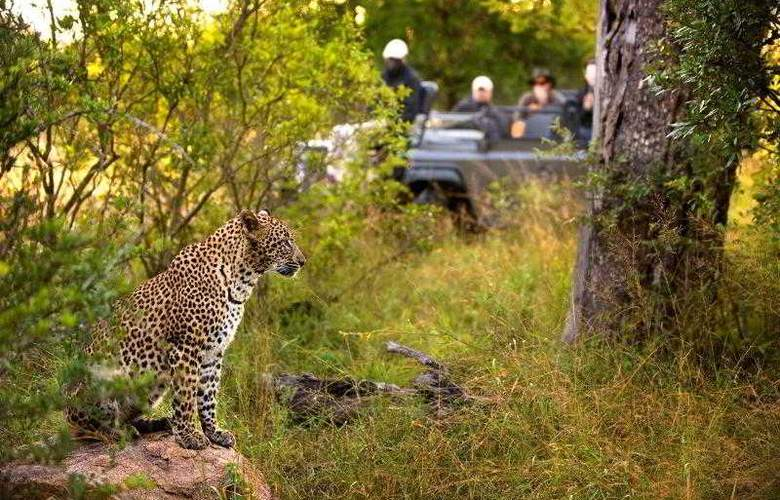 Lion Sands Tinga Lodge - Sport - 4