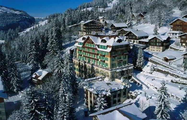 Belvedere Wengen - Hotel - 5