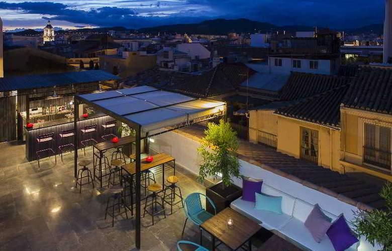 Molina Lario - Terrace - 9