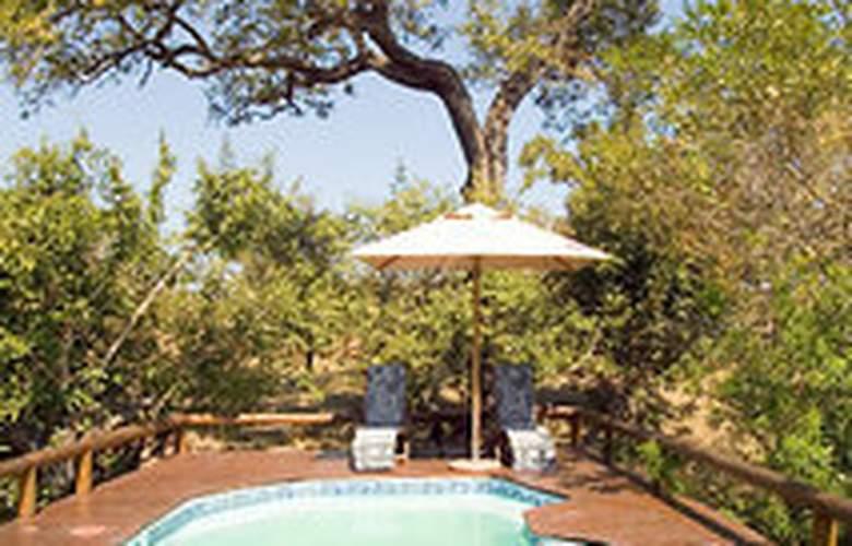 Camp Shonga - Pool - 3