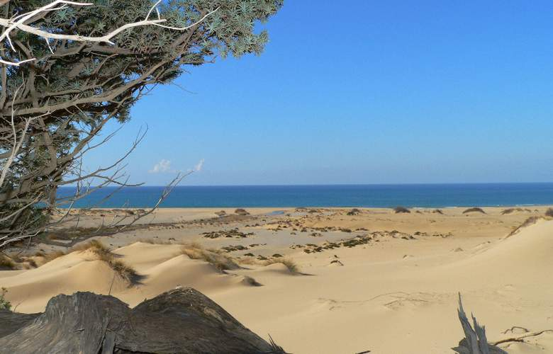 Tarthesh - Beach - 4