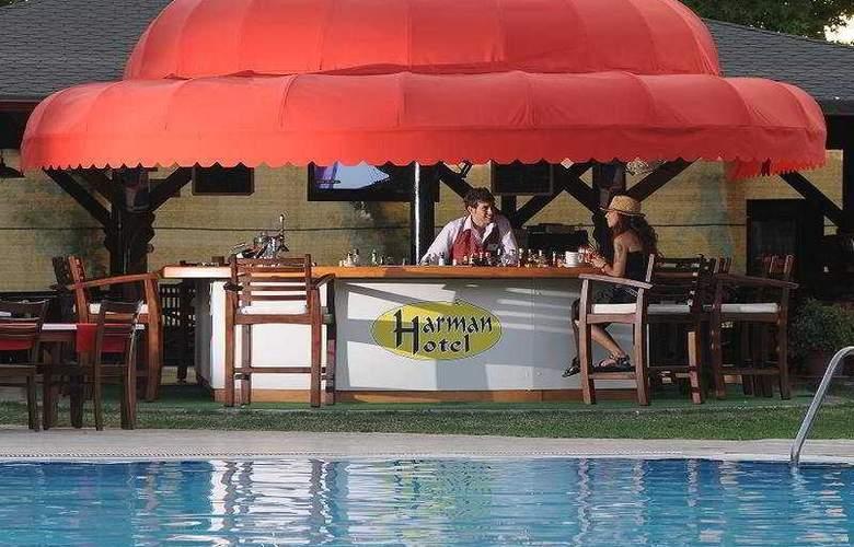 Harman Hotel - Bar - 6
