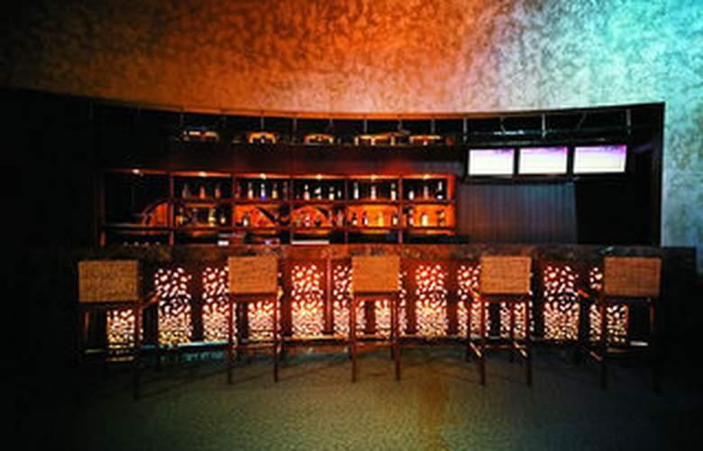Dong Jiao State Guest - Bar - 5