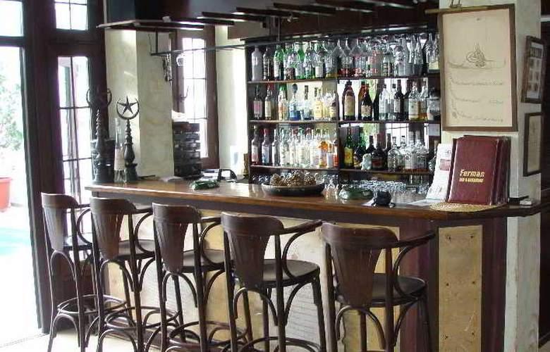 Ferman Residence - Bar - 3