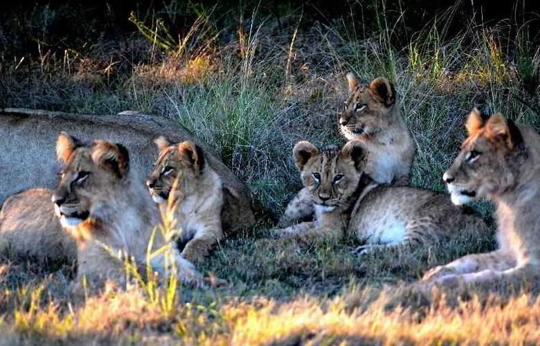Gondwana Game Reserve - Sport - 5