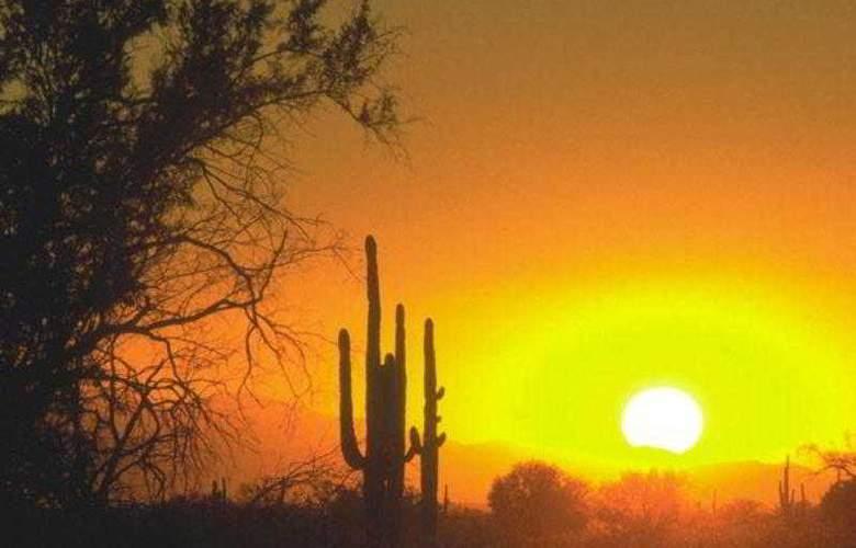 Residence Inn Phoenix Glendale Sports - Hotel - 10