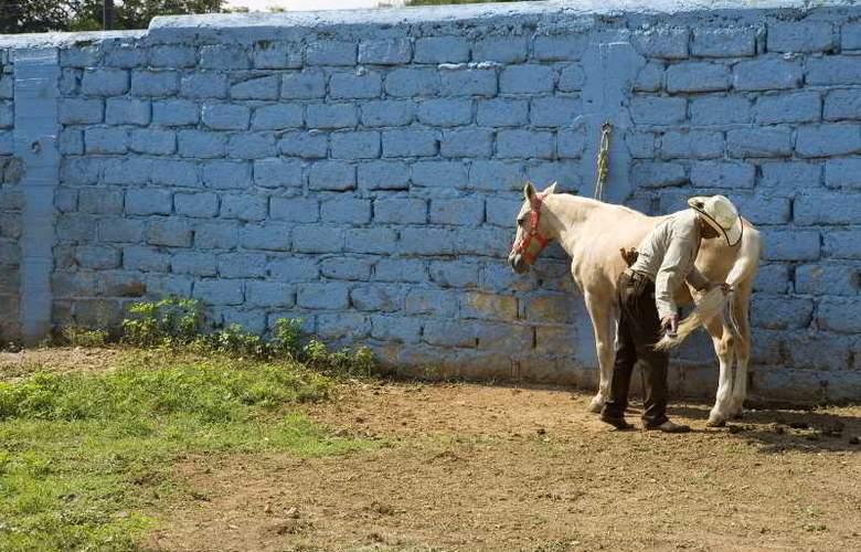 Fiesta Americana Hacienda Galindo - Sport - 35