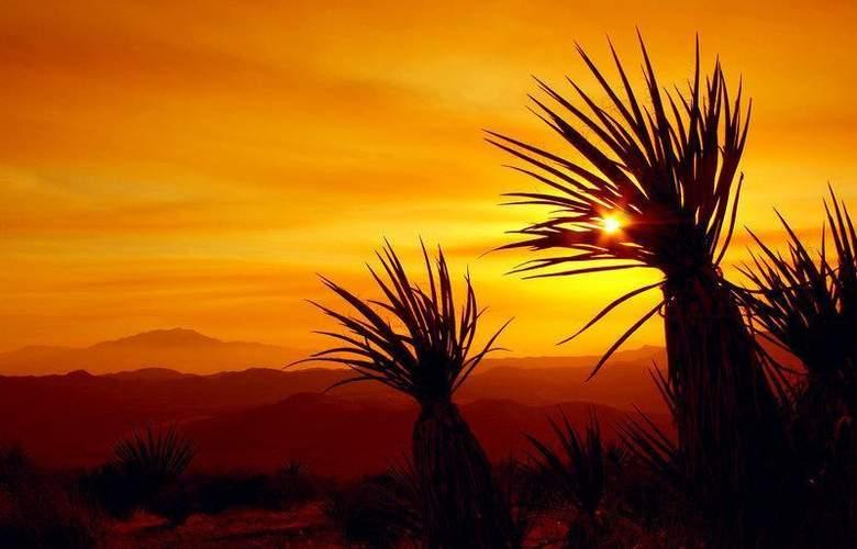 Best Western Inn at Palm Springs - Hotel - 64