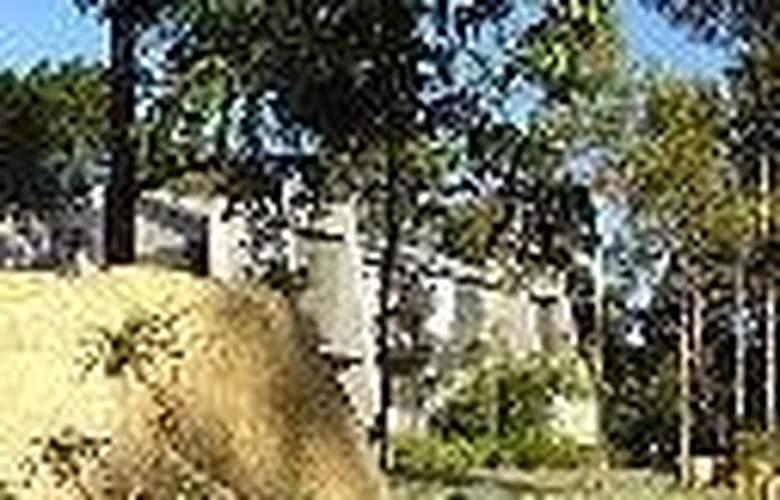 Margarets Forest - General - 5