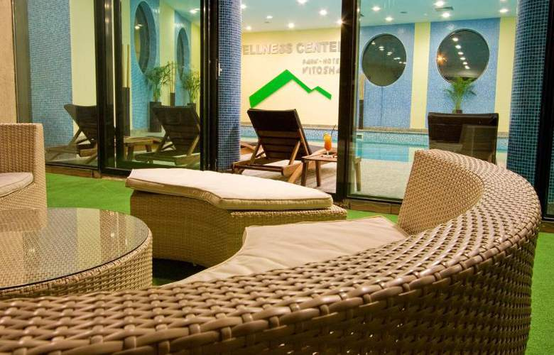 Vitosha Park Hotel - Pool - 16