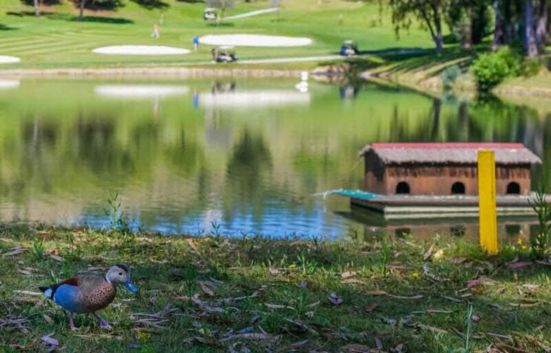 Sol Marbella Estepona Atalaya Park - Sport - 54
