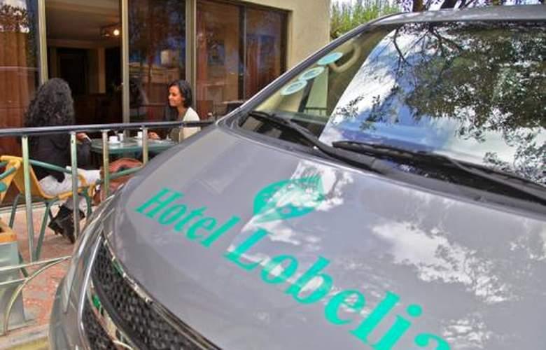 Lobelia - Services - 2
