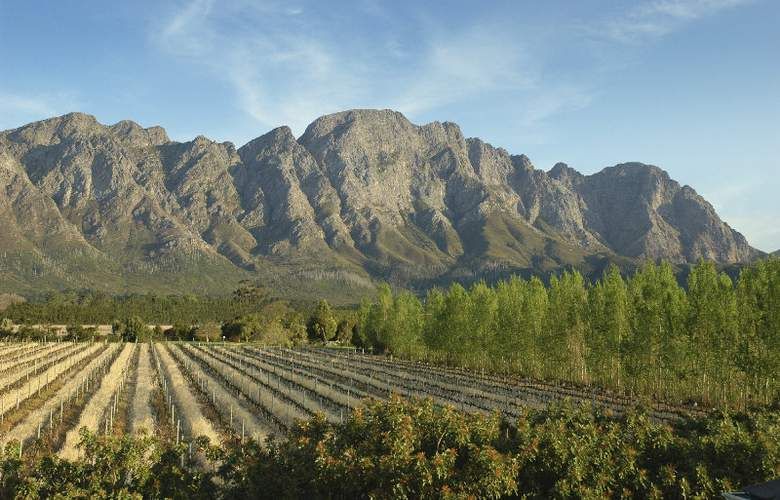 Franschhoek Country House & Villas - Hotel - 4