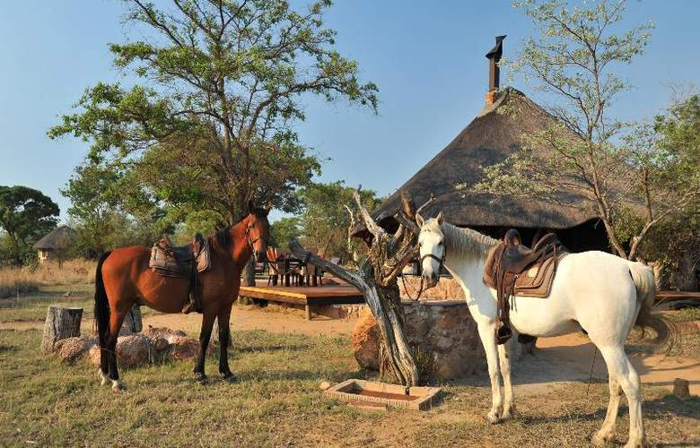 Kwafubesi Tented Safari Camp - Hotel - 13