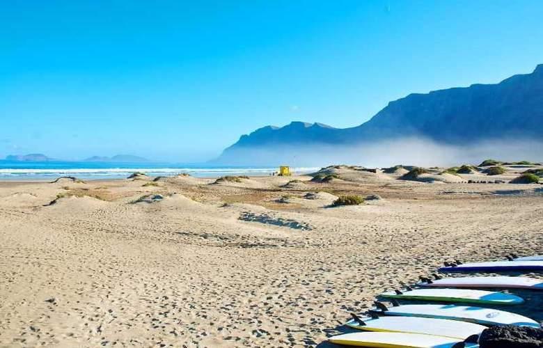 Camel Spring - Beach - 10