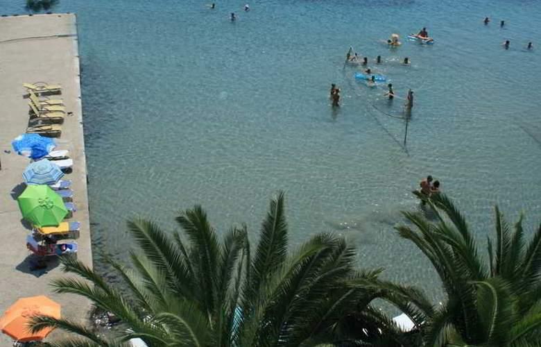 Dolphin - Beach - 4