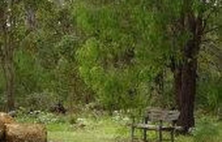 Margarets Forest - General - 6