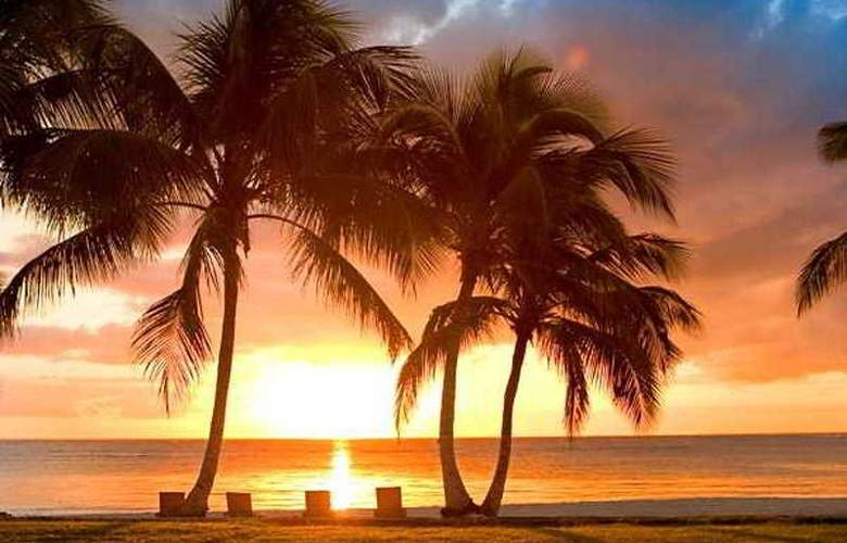 Tortuga Bay - Beach - 5
