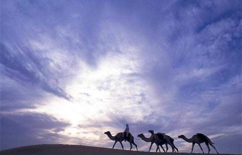 Al Maha Desert - Hotel - 22