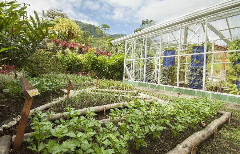 GreenLagoon Wellbeing Resort - Terrace - 39