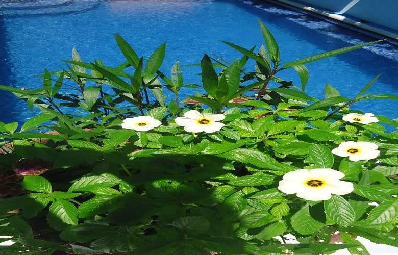 Mandarina - Pool - 43