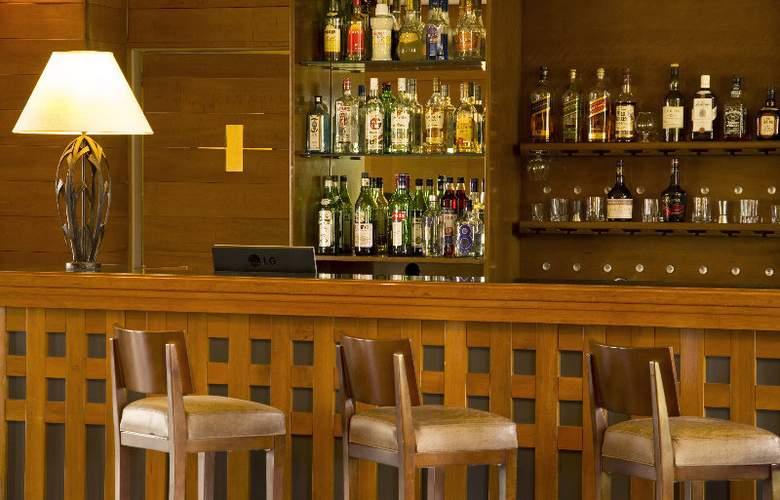 RH Rochester Calafate - Bar - 6