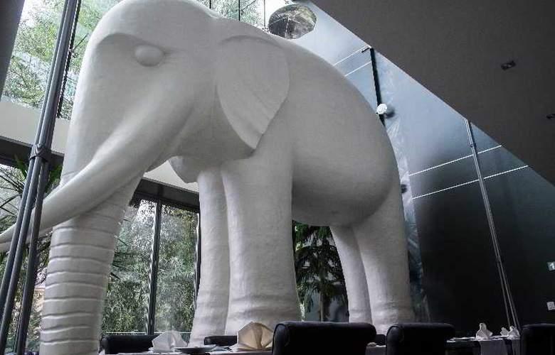 Elefant - General - 9